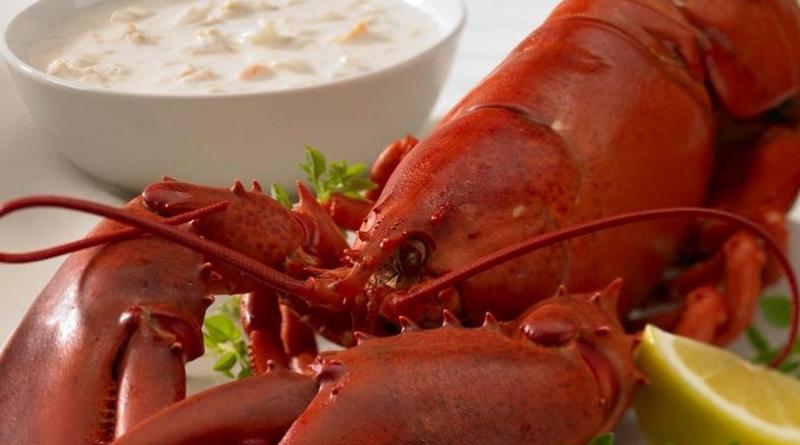 Un peu de homard, beaucoup de mépris.